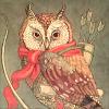 militant owl
