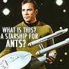 Starship for Ants