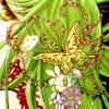 hikari_world userpic