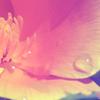 lemon_oh userpic
