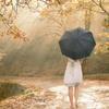 Princess Jackie: {stock} Umbrella in the Rain