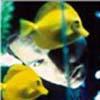 davidfish