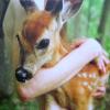 fawn love hug
