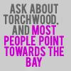 Torchwood bay