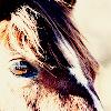 dormilone userpic
