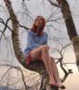 on the tree