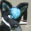 fizzyfox userpic