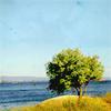 autumnleaves23: Jim Halpert