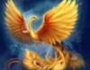 phoenix_ab