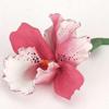 Елена Фамова: орхидея