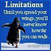 Anna Fugazzi: Limitations