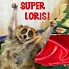 superloris userpic