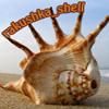Rakushka_Shell!
