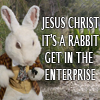 JESUS CHRIST ITS A RABBIT