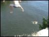 cliff, jump