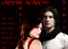 vampire academy series rose and dimitri