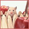 hamsterika userpic