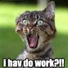 random I HAV DO WORK?!
