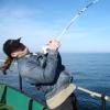 рыбалка, удочка, поймал