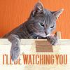EPandora: I`ll be watching you
