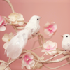 Марфа Хари: pinky birds