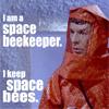 space beekeeper