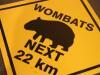 dr_wombat userpic