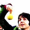Macca Apple
