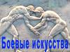 fighting_art userpic