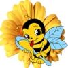 beeapis userpic