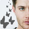 strgazr04: Jensen butterfiles