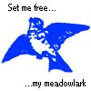 yourmeadowlark userpic