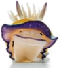mela_lyn: Nudibranch SMILE