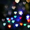 rachel: jen aniston//pup//love