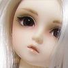 syuusuke1