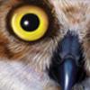 laurajacquesart userpic