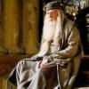 Albus Dumbledore [Harry Potter]