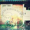 KIRA  WU: bicylehouse