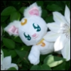 ~ ♥ Itty Bitty Boo ♥ ~: My Artemis Playing in Flowers