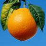Апельсин на фоне неба