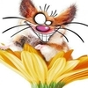 i_crazymouse userpic