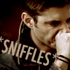 dean sniffles