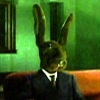 rabbit_jack userpic