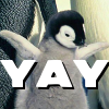 colleenish: Yay!penguin
