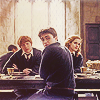 100 Potter