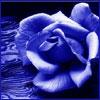 smwhr23 userpic