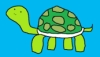 kame_the_turtle