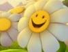 life_bright userpic