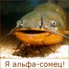 Рыбосома