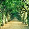 natureystacy userpic